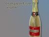 vergoldete Champagnerflasche